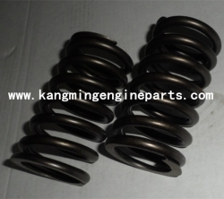 chongqing engine parts K38 part 3629007 spring, valve
