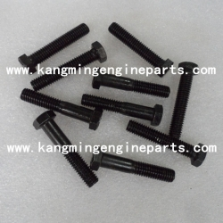 Engine parts KT50 Screw Hexagon Head Cap 3628196