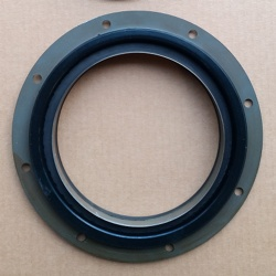 USA ccec qsk19 kta19 diesel engine parts 4922217 4089902 Oil Seal